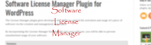 Software License Manager